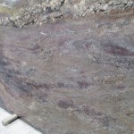 Crema Bordeaux 117x74 Brazil Granite