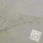 White Macaubus2 2-10-15